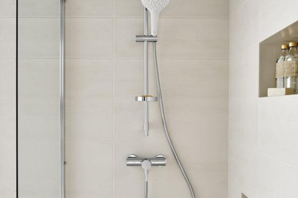 Stainless steel shower column