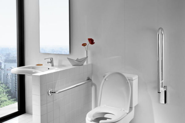 Wall mounted grab bar for toilet