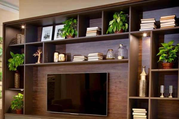 Luxury tv unit decor